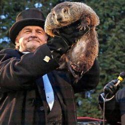 El virus de la marmota   Foto:Cedoc