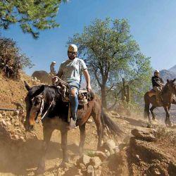 El caballo es el medio de transporte natural para explorar Los Andes.