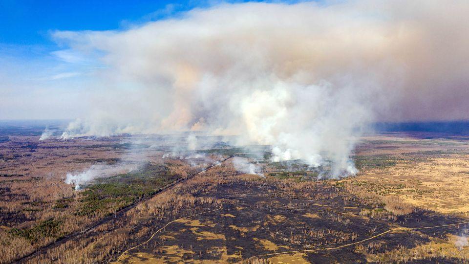 El Bosque Rojo se incendia desde el 3 de abril 2020