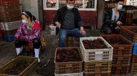 mercado alimentos wuhan china