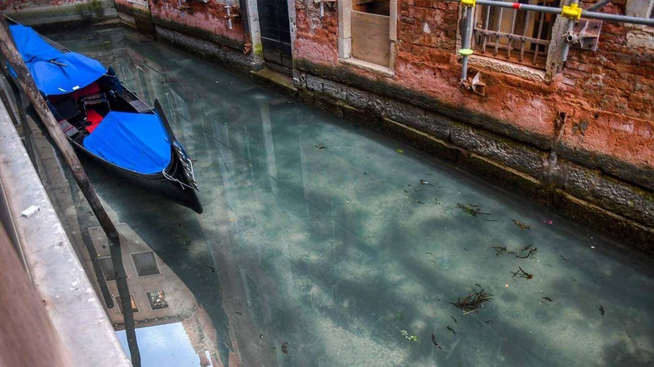 VENECIA. El especialista señala que los cambios positivos en el ambiente como el que se produjo en la ciudad italiana no pueden prescindir de la actividad humana.