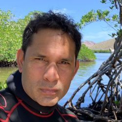 El biólogo y fotógrafo mexicano Octavio Aburto lleva 26 años investigando los ecosistemas marinos.