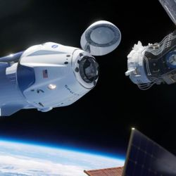La Crew Dragon es una cápsula espacial que se desarrolló en conjunto con la NASA para devolverle a la institución la capacidad de enviar personal al espacio exterior.