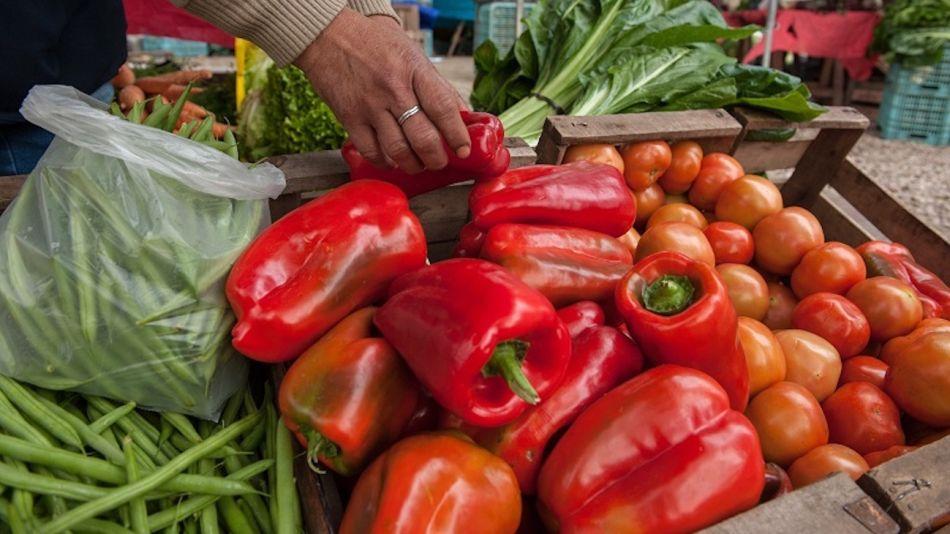 Bolsones de verdura