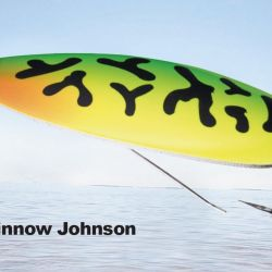 Silver Minnow Johnson