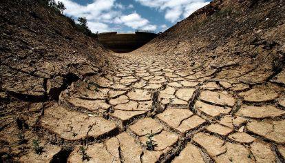 CAMBIO CLIMATICO. Un efecto en la naturaleza de situaciones que son sociales.