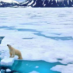 Las predicciones más pesimistas vaticinan que el océano Ártico estará la mayor parte del año sin hielo.