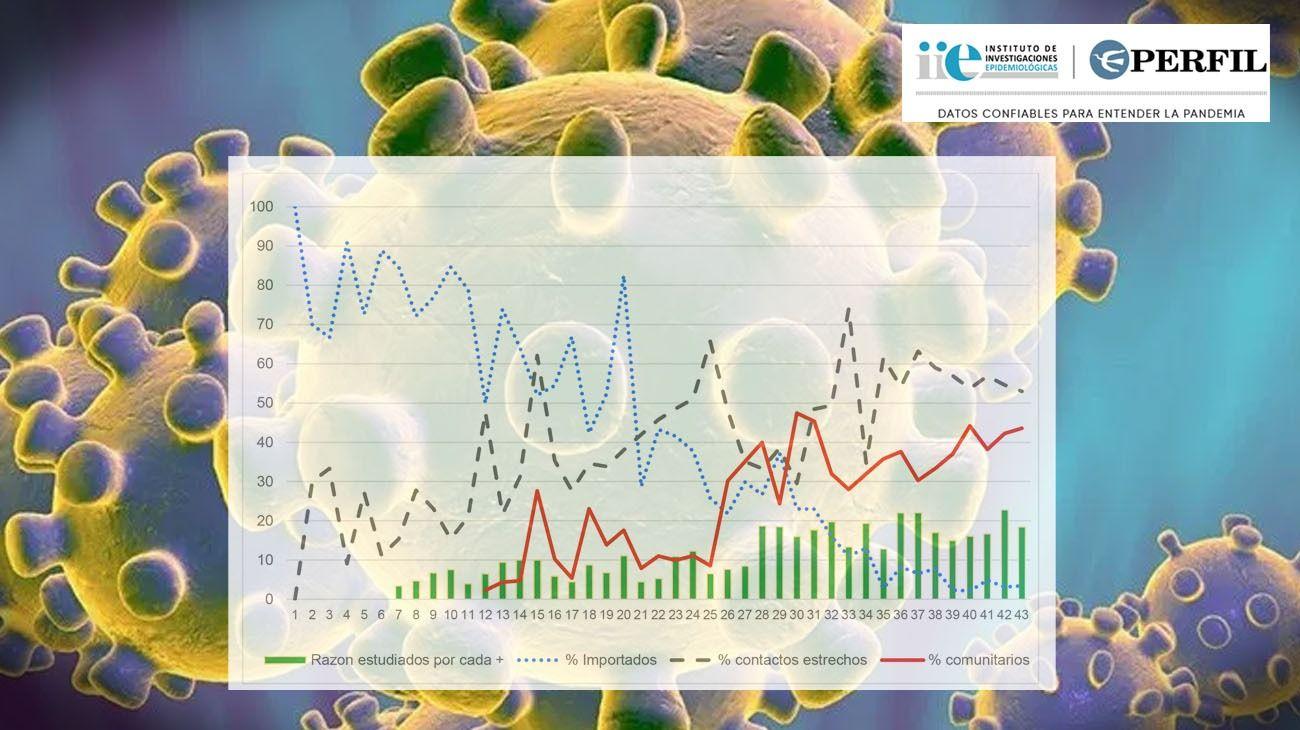 La evolución de los casos de coronavirus en Argentina.