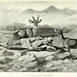 Viajeros y naturalistas registraron en sus diarios la presencia de huemules en áreas de estepa y cañadones alejados hasta unos 100 kilómetros del límite del bosque.