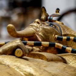 Entre el material hay videos en los que se recorren los tesoros del Museo Egipcio del El Cairo.