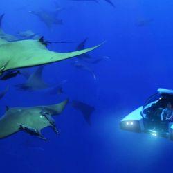 El Nemo tiene un precio de 975.000 euros.