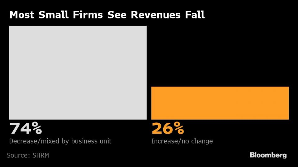 Most Small Firms See Revenues Fall