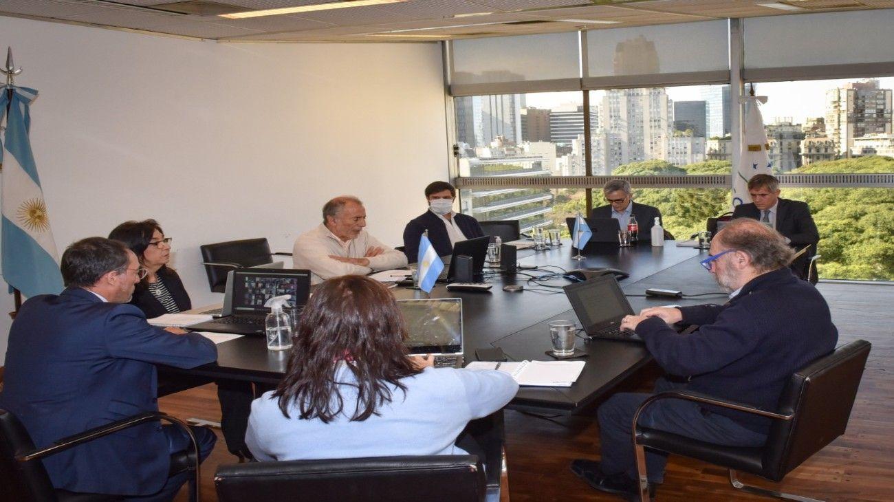 Jorge Neme, secretario de Relaciones Económicas Internacionales, en la videconferencia con los coordinadores del Mercosur