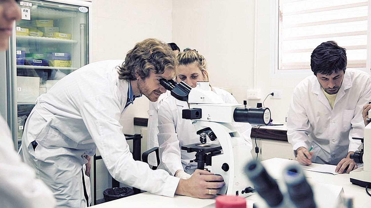 Equipo. Fernando Rivero lidera el grupo de la Universidad Nacional de Santiago del Estero a cargo de la investigación, junto a la Universidad Nacional de La Plata.