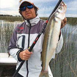 Mostrar la cantidad es siempre el orgullo del pescador, pero también mostrar la captura más grande. Que vuelva la pesca, y de la buena.