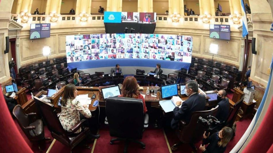 Primera sesión virtual del Senado-20200512