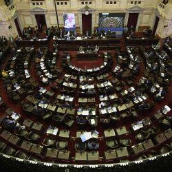 Vista de la Cámara de Diputados durante la primera sesión virtual en el Congreso argentino dentro del bloqueo contra la propagación del nuevo coronavirus COVID-19, en Buenos Aires, Argentina, el 13 de mayo de 2020. (Foto de JUAN MABROMATA / AFP)   Foto:AFP