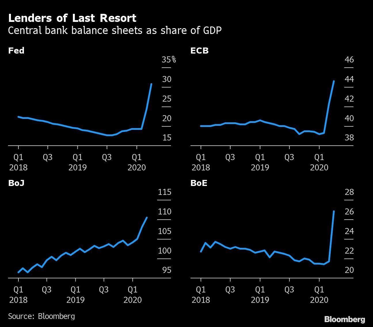 Lenders of Last Resort