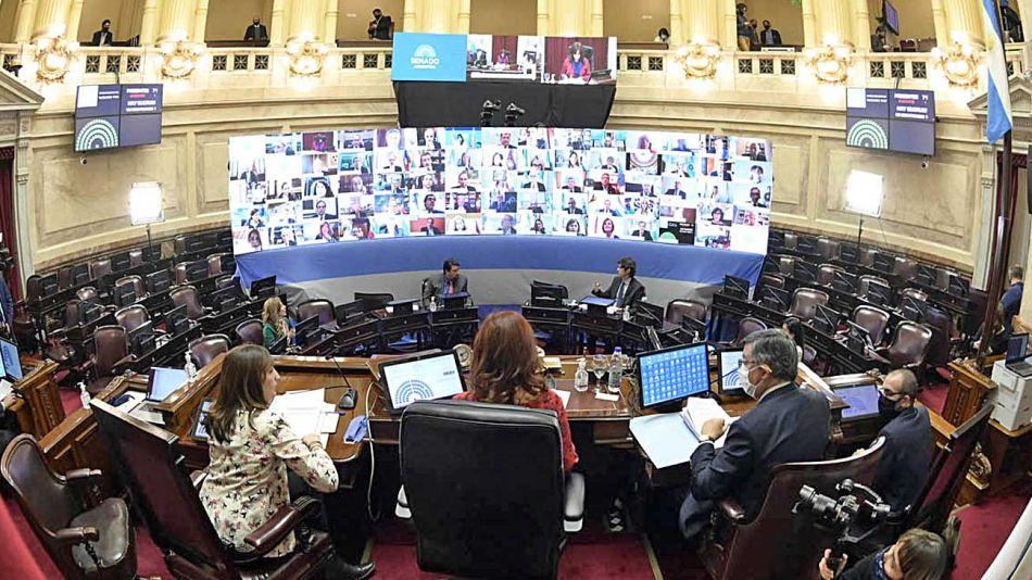 20200517_cristina_sesion_virtual_prensa_senado_g
