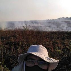 Si algo le faltaba a la bajante eran incendios intencionales en la isla Las Damas, frente a Goya.