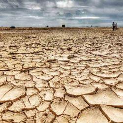 El cambio climático genera sequías y otros fenómenos nocivos para la producción de alimentos.