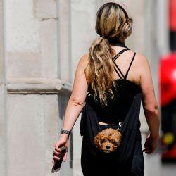 Una mujer lleva un cachorro en una bolsa de honda mientras camina por Whitehall en el centro de Londres el 20 de mayo de 2020, mientras se alivian los bloqueos durante la nueva pandemia de coronavirus COVID-19. - La cifra oficial de muertos por coronavirus de Gran Bretaña es de al menos 41,000 con casi 10,000 muertos en hogares de cuidado solo en Inglaterra y Gales, según una actualización estadística publicada el martes. (Foto por Tolga AKMEN / AFP) | Foto:AFP