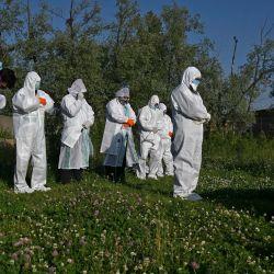 Los familiares que usan equipo de protección personal (PPE) ofrecen oraciones funerarias por una mujer, que murió por el coronavirus COVID-19, durante su entierro en un cementerio en Srinagar el 21 de mayo de 2020. (Foto de TAUSEEF MUSTAFA / AFP)   Foto:AFP