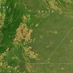 La imagen muestra como estaba hace 20 años El Gran Chaco, lleno de verde y de la vida natural que se fue perdiendo a manos del hombre.