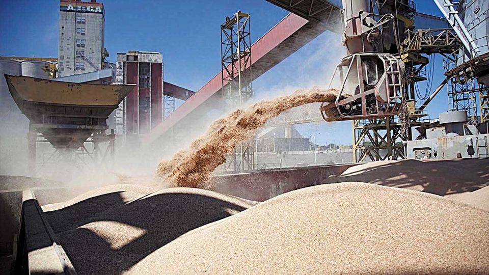 Ventas. Por las expectativas de devaluación, las cerealeras retacean las liquidaciones.