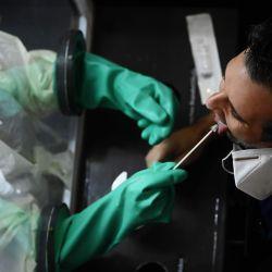Un trabajador de la salud toma muestras mientras analiza el coronavirus COVID-19, en San Salvador, el 25 de mayo de 2020. - El gobierno de El Salvador instó a la población a cumplir con las medidas preventivas para detener la creciente propagación del nuevo coronavirus, que ha alcanzado casi 2,000 casos. . (Foto por MARVIN RECINOS / AFP | Foto:AFP