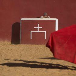 La novillera española Rocio Romero entrena en la granja Montes de Oca en Olvera, cerca de Cádiz, el 26 de mayo de 2020. - El matador español Javier Conde entrena todos los días en preparación para el inicio de la temporada taurina que se retrasó debido a las medidas de bloqueo del coronavirus. (Foto por JORGE GUERRERO / AFP) | Foto:AFP