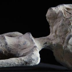 Las momias de Nazca podrían ser extraterrestres y tendrían 1.700 años de antigüedad.