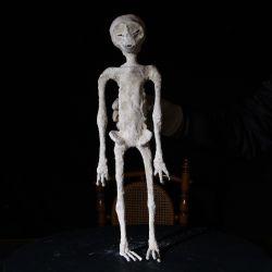 Se mostrarán los resultados de una investigación científica para analizar los restos hallados en el departamento de Nazca.