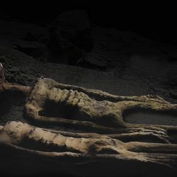 El tedioso trabajo de colocar el ADN de las momias en registros fósiles y compararlo con los humanos modernos y antiguos ha comenzado y cada hallazgo arroja más preguntas que respuestas.