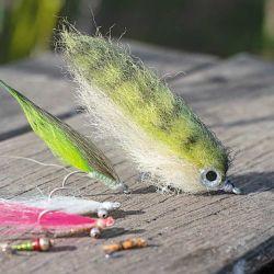 Set de moscas efectivas. De arriba hacia abajo, un bait fish de pelo sintético, una blonde, dos clouser minnow y dos Crazy Charlie.