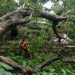 Los aldeanos examinan un árbol desarraigado después de una tormenta eléctrica en el pueblo de Fulbari, en las afueras de Siliguri, el 27 de mayo de 2020. (Foto de Diptendu DUTTA / AFP) | Foto:AFP