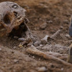 Un arqueólogo trabaja en una excavación realizada por la Asociación Hispanoirlandesa en una capilla en ruinas en Valladolid, que espera identificar los restos del señor rebelde irlandés  | Foto:AFP