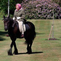La reina Isabel II de Gran Bretaña monta a Balmoral Fern, un Fell Pony de 14 años, en Windsor Home Park, al oeste de Londres. | Foto:Steve Parsons / AFP