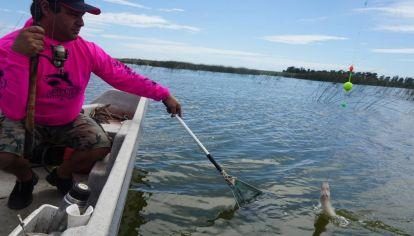 Los pejerreyes volvieron con todo en la laguna San Cayetano.