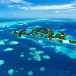 Los océanos también son el principal pulmón del planeta.