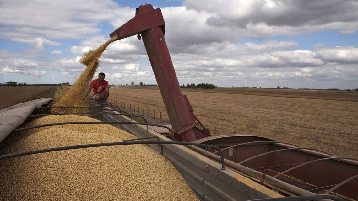 In Argentina's grains hub on the Paraná River there are fears Vicentin will be afforded unfair advantages over rivals or will distort the market by overpaying farmers.