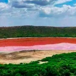 Así está ahora el lago Lonar, en el estado de Maharashtra de la India:cambió repentinamente de color.