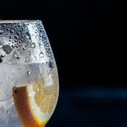 Recetas con gin.