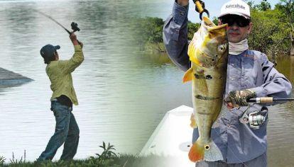 Es una técnica muy útil para mover hélices, poppers o paseantes, aprovechando que el reel queda debajo de la caña, que debe apuntar hacia el agua.