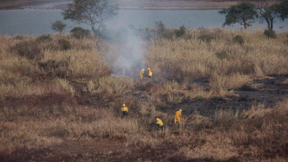 Quemas indiscriminadas de pastizales en todo el Delta medio del Paraná