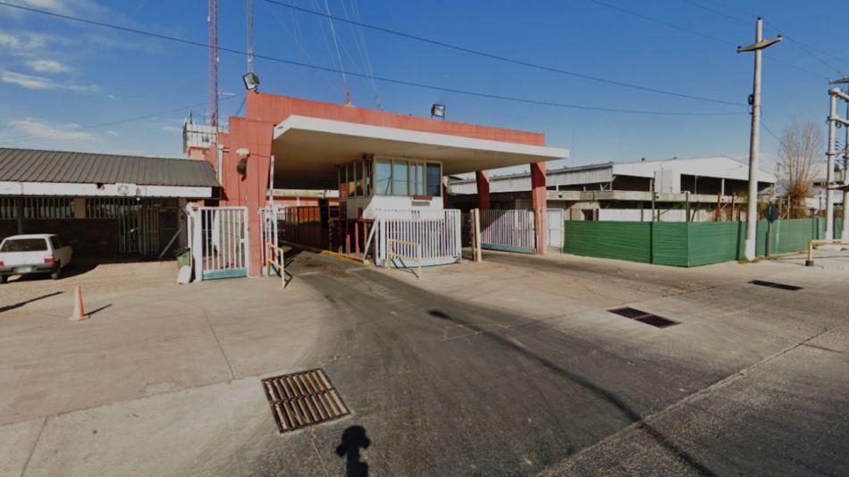bodega Viñedo Viejo 20200617