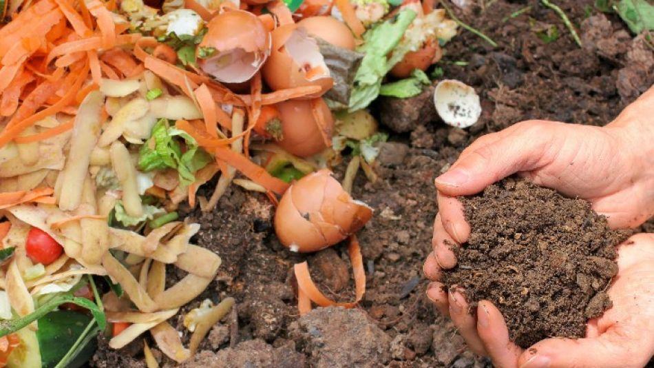 Compostar: una manera natural de transformar los residuos orgánicos