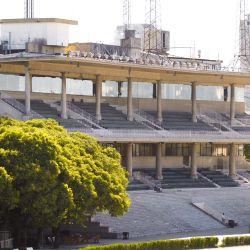 Hipodromo Palermo Turf | Foto:Cedoc