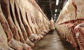 2006- beef industry