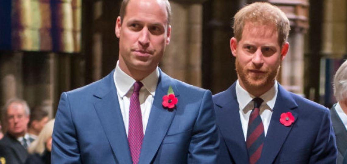 Batalla de hermanos: todo acerca del libro que revela el vínculo entre William y Harry